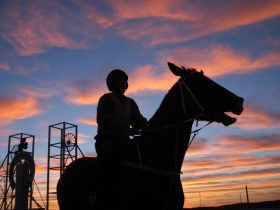 Silver City Cup Sunset