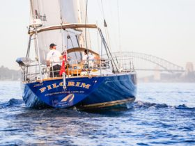 Pilgrim sailing towards the Harbour Bridge