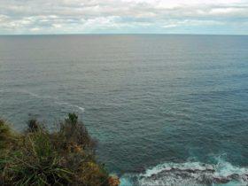 Snapper Point lookout, Murramarang National Park. Photo: M Jarmon