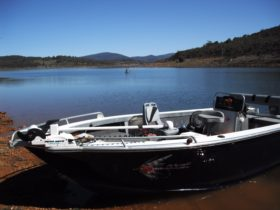 Snowy mountain lakes fishing charters