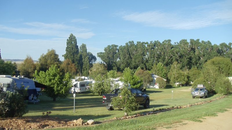 Snowy River Holiday Park
