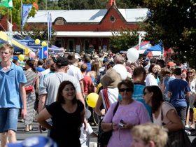 Springwood Foundation Day Festival crowds
