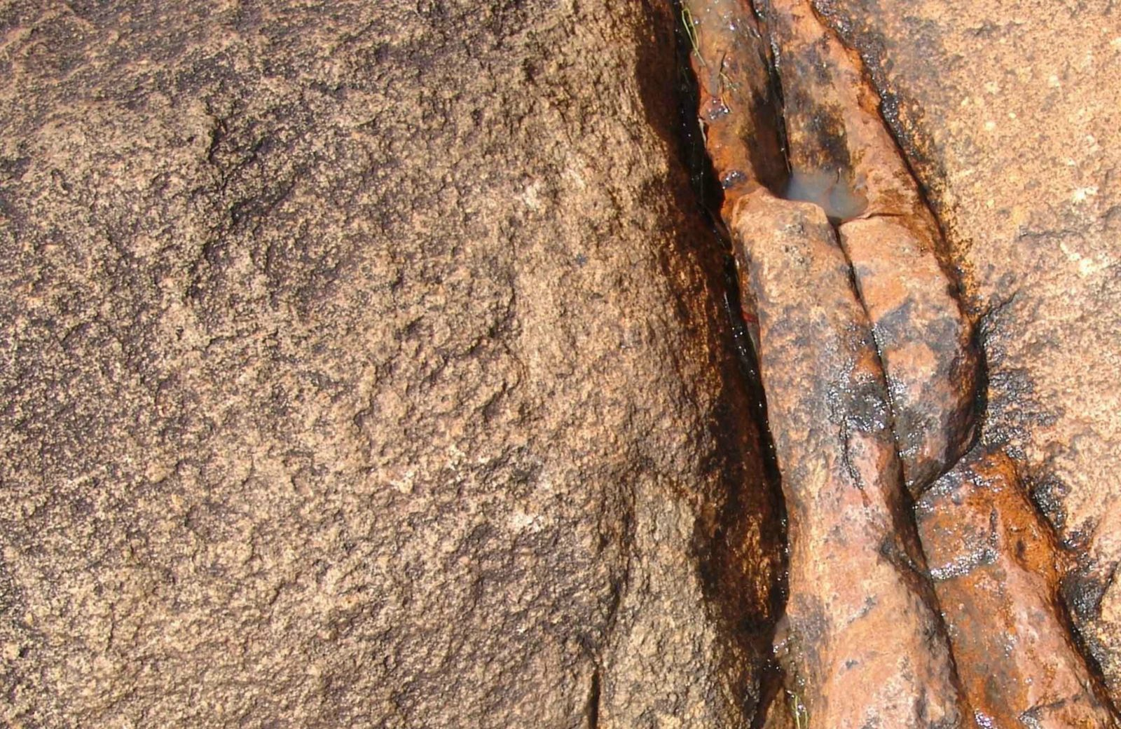 Stonewoman Aboriginal Area. Photo: NSW Government