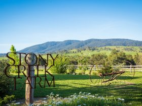 Welcome to Stony Creek Farm