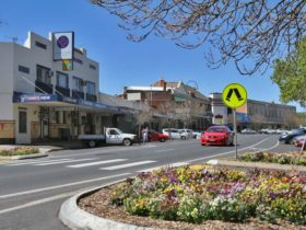Street Scenees Wellington NSW