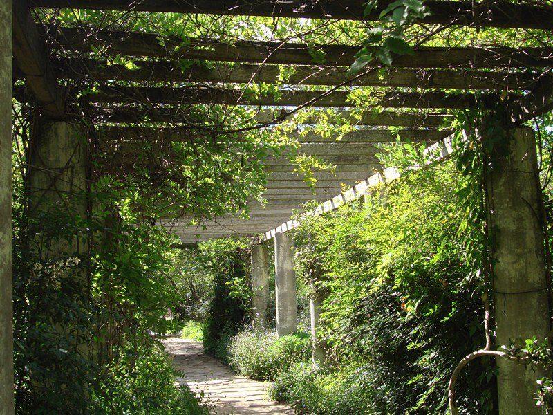 Sturt gardens