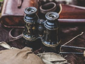 Antique binoculars sitting with leather case