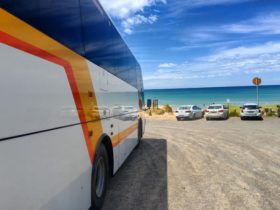 Sydney Bus Charters, Bus hire, Transportation solutions, private charter groups, chartered day tours