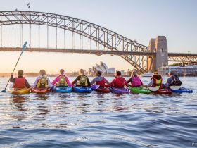 Sunrise-kayak-Sydney