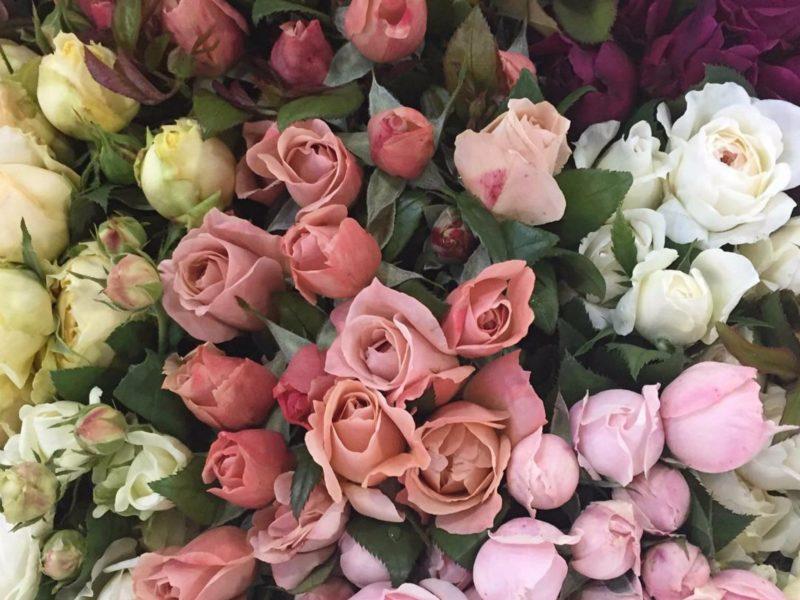 Sydney Flower Market
