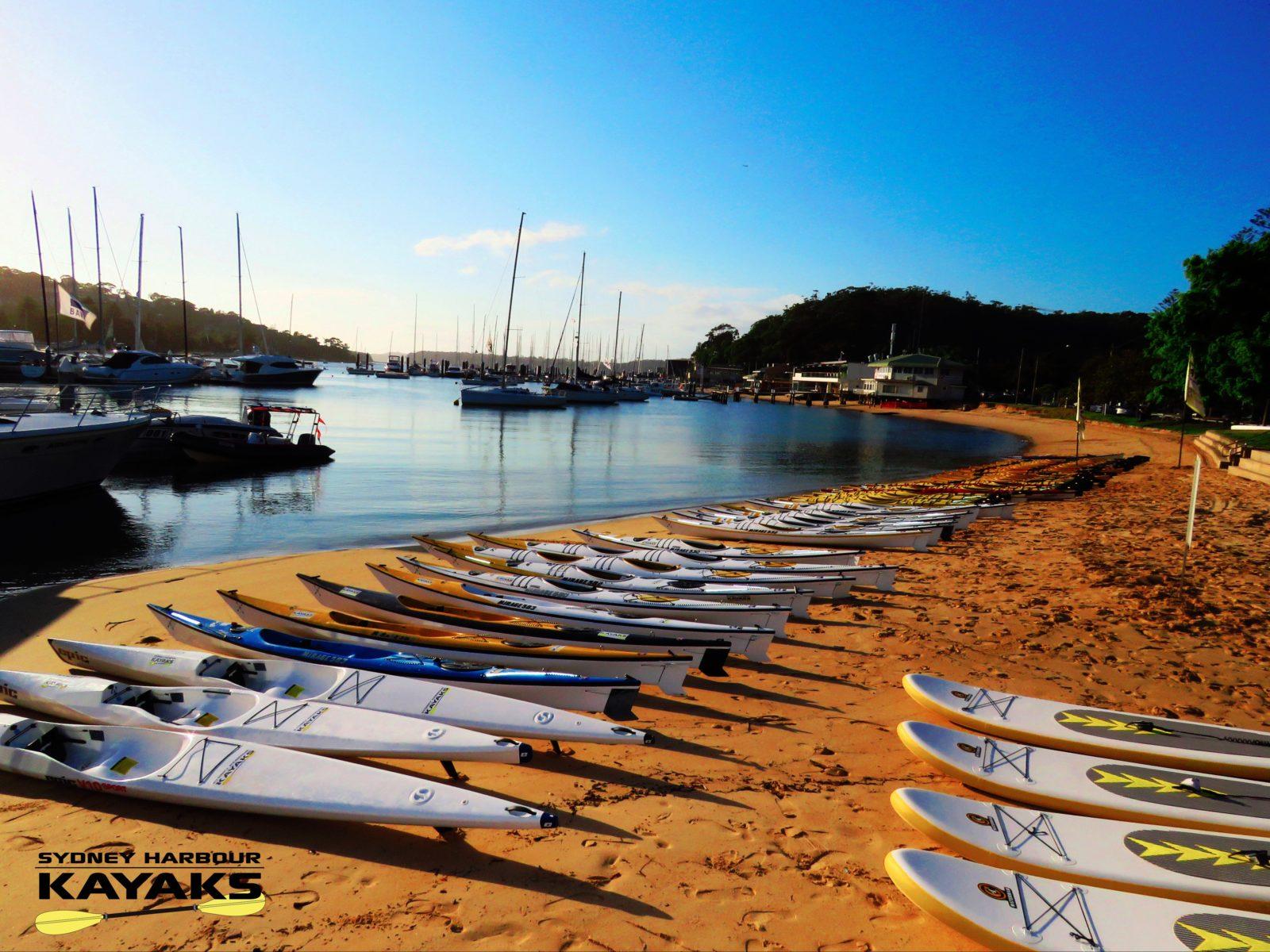 Sydney Harbour Kayaks Fleet
