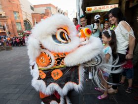 lion dances chinatown