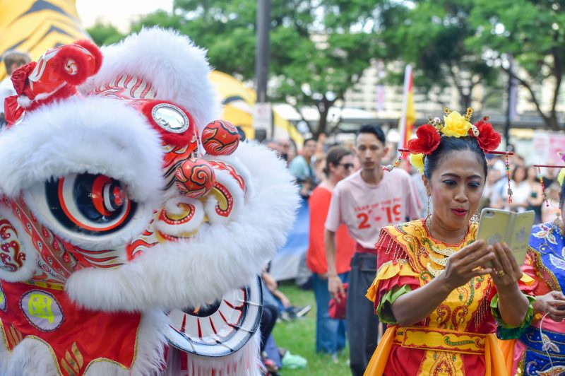every day lion dances