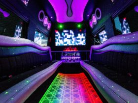Sydney Party Limos hire, party bus hire, limo hire, bus tour, limo tour