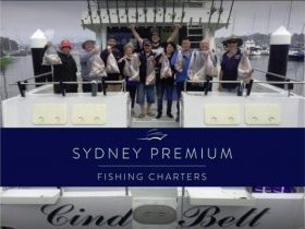 Fishing charters in Cronulla Sydney
