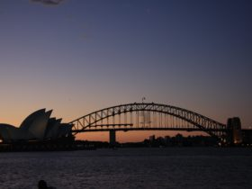 Sydney Prive