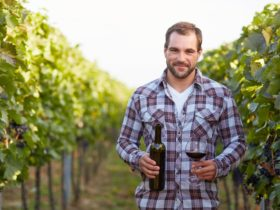 Meet the winemakers at Sydney WIne Festival