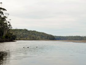 Tabourie Lake, Meroo National Park. Photo: Michael Jarman