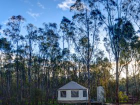 Yurt by the billabong