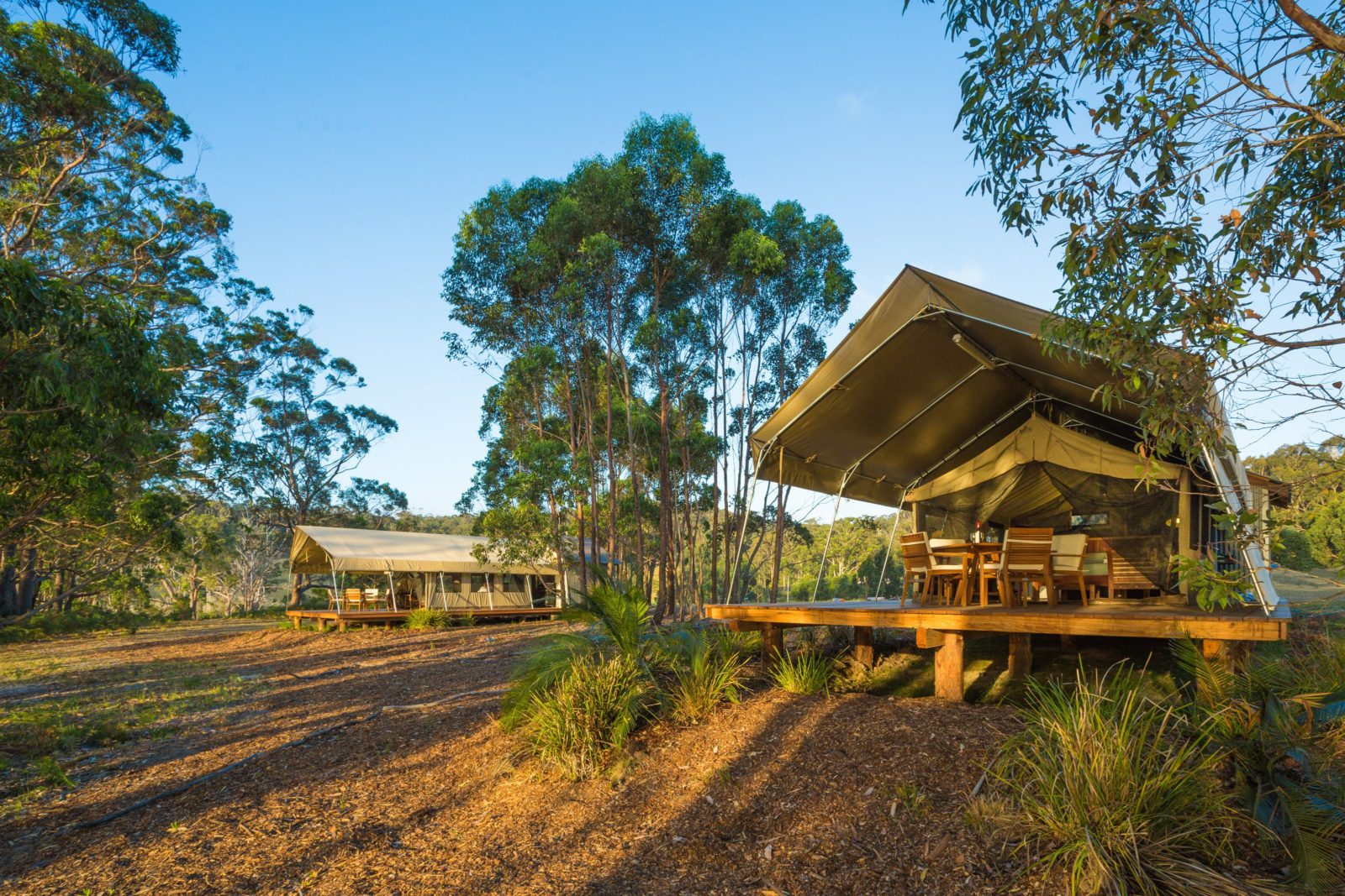 Tanja Lagoon Camp Safari Tents