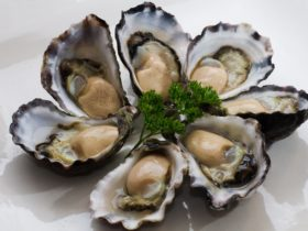 Luscious Tathra Oysters grown in the Pristine waters of Nelsons Lake in Mimosa Rocks National Park,