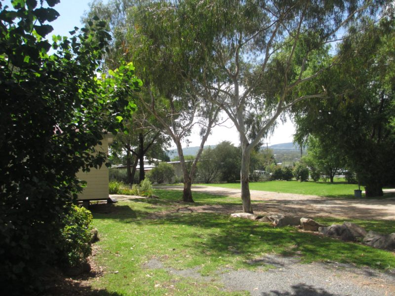 Tenterfield Lodge Camping Sites