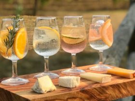 Gin and Cheese tasting
