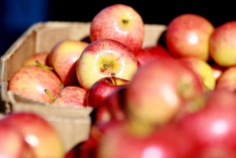 Freshest of local produce