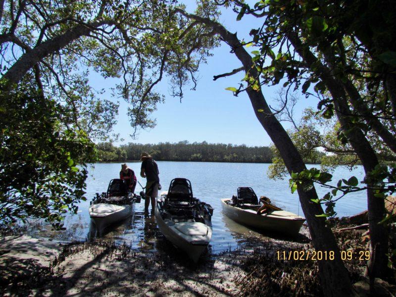 The Kayak Co