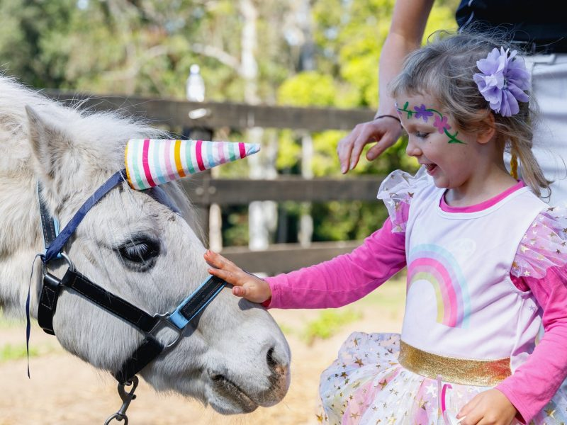 Girl patting a horse at her pony party in Terrigal