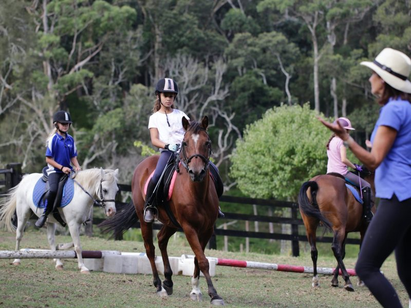 Group horse riding lesson at The Outlook Academy in Terrigal