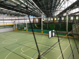 Court 6 View