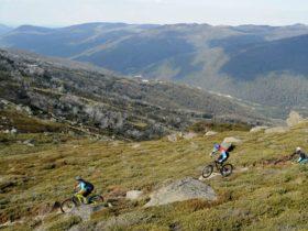 Thedbo Mountain Biking