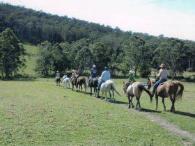 Timbertops - Horse Riding
