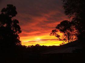 Tinonee sunset