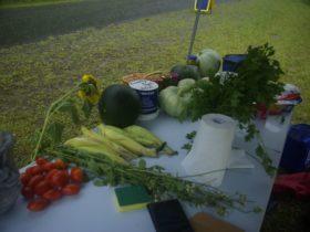Tirrintippin organic vegetables and fruits