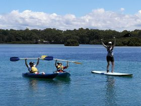 Hire a Kayak or SUP to immerse yourself in nature