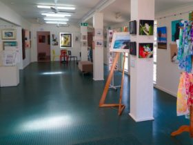 Toukley and Districts Art Society