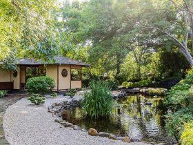 Japanese hut in Japanese garden around a fish pond