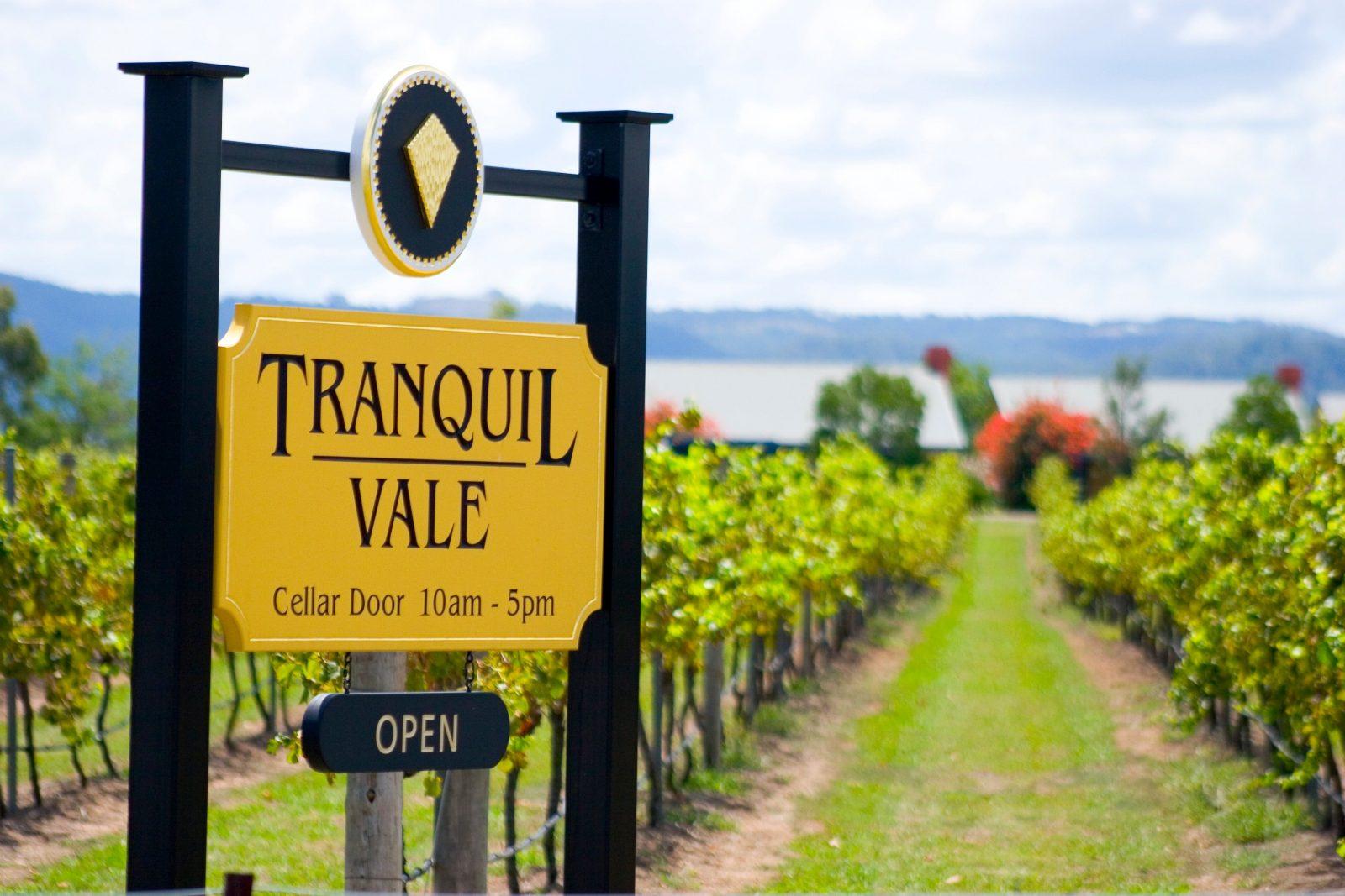 Tranquil Vale Vineyard