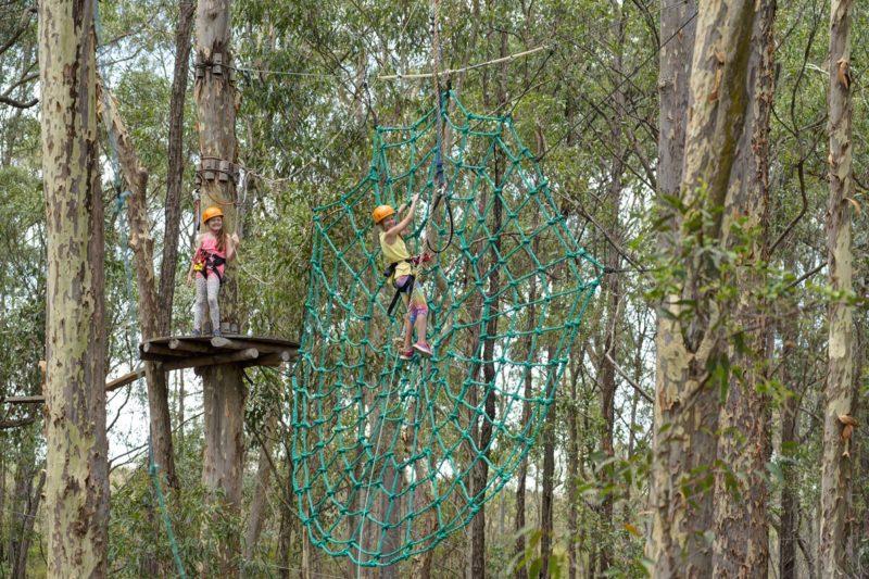 TreeTop Adventure Park Newcastle