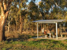 Turkey Flat picnic area and bird hide, Murrumbidgee Valley National Park. Photo: Gavin Hansford