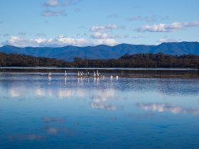 Tuross Lake