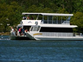Tweed Endeavour Cruises