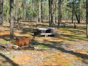 Two Dams picnic area