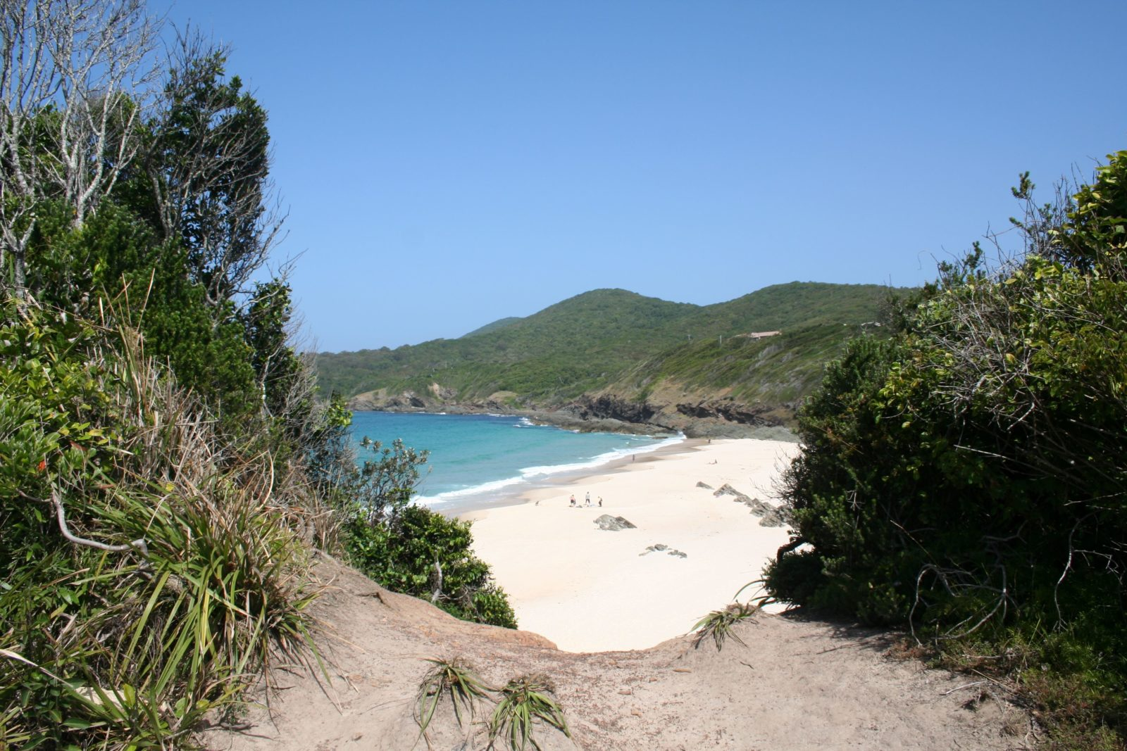 Unwind and Relax at Forster