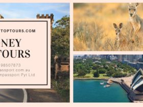 Sydney Private Tours