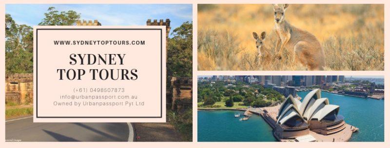 Sydney Private Tours