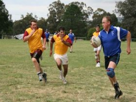 Veterans Touch Footy Carnival