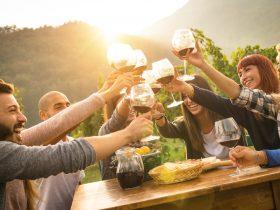 vineyard experience